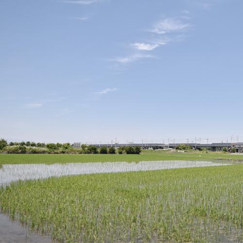 210609_稲沢市の敷地調査へ
